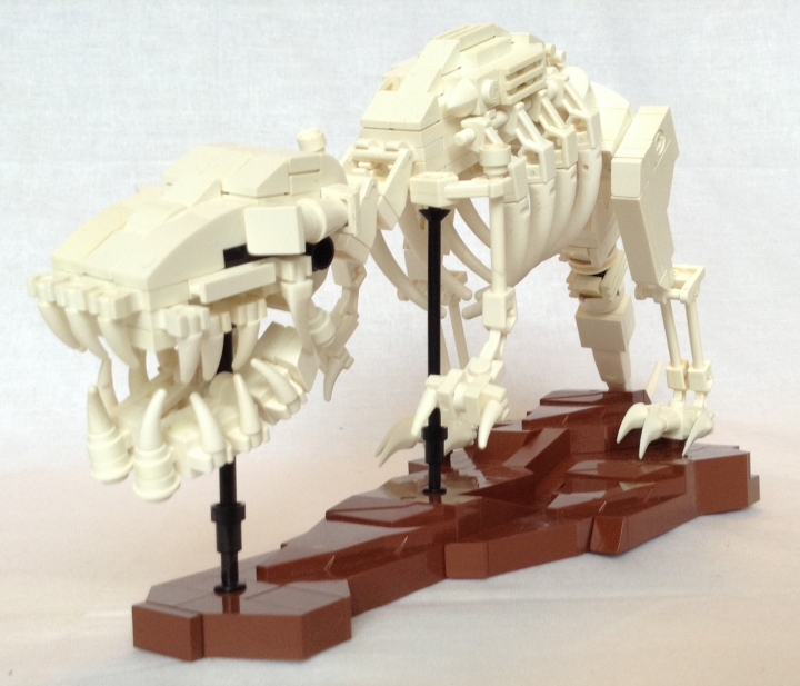 LEGO MOC - Jurassic World - A new exhibit in the city museum: Tyrannosaurus could move quite fast to hunt successfully large hadrosaurs and ceratopsians. Tyrannosaurus could wrest a piece of meat weighing 70kg from the victim`s body for one bite.